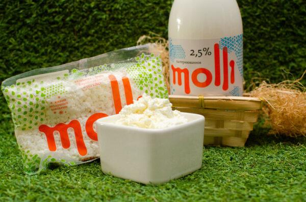 Творог и молоко Molli