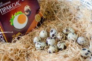 """Яйца перепелиные, """"Праксис"""""""